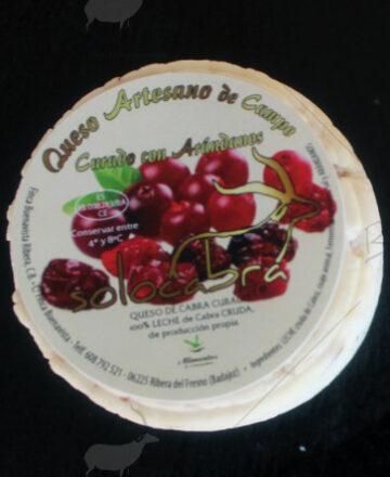 queso de cabra con arándanos Solocabra